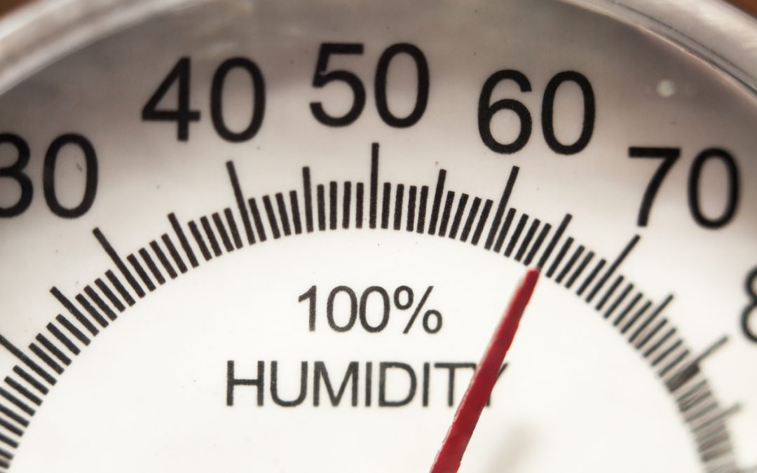 Learn How to Manage Humidity Levels by Season