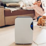 The Best Air Purifiers For Your Home
