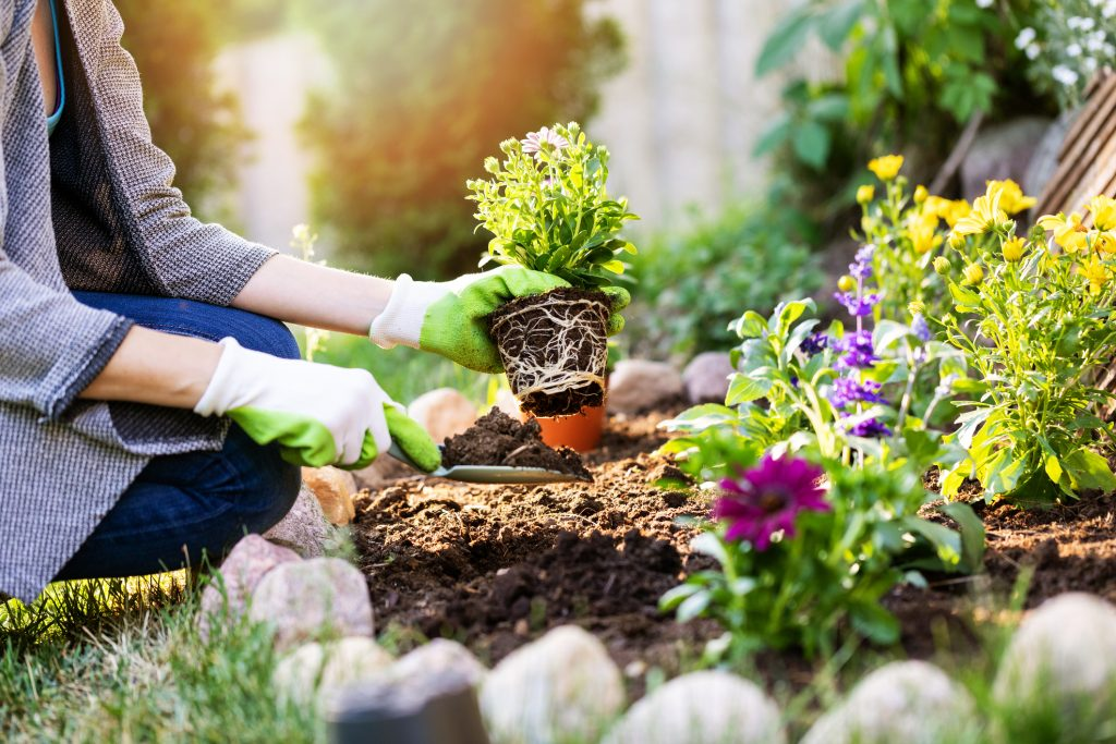 Does Gardening Affect Your HVAC Performance?